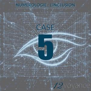 Nombre d'inclusion 5